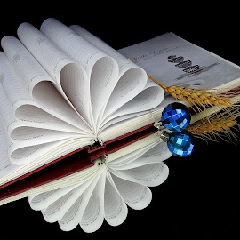 The diary by Asif Bora - Artistic Objects Education Objects