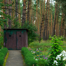 If you have to go.... by Gary Hanson - Buildings & Architecture Other Exteriors ( ukraine, kanev, outhouse, forest, flowers, walk, garden )