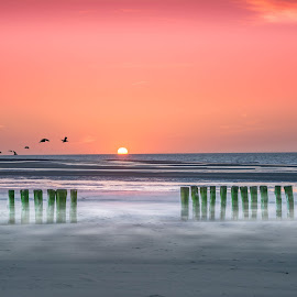Misty moments in Zeeland by Marcel Eringaard - Landscapes Sunsets & Sunrises ( nikonshooter, seas, waterscape, seascapes, sunset, northsea, seascape, zeeland, netherlands )