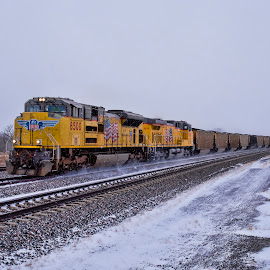Blustery Day by Jeff Cottingham - Transportation Trains ( locomotive, union pacific, trains, triple track main, up )