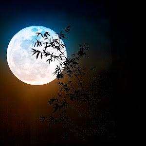 moon2pixo.jpg