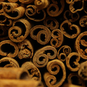 Cinnamon sticks at an Istanbul market by Svetlana Joshi - Food & Drink Ingredients