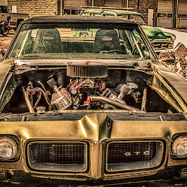 Mustardmobile by Arnold Ward - Transportation Automobiles ( car, grunge, engine, automobile, vehicle, gto, gold,  )