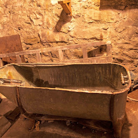 tub by Will McNamee - Artistic Objects Antiques ( patty_j_ball@hotmail.com; donaldbarber11@msn.com; donaldbarber11@msn.com; d3a1@aol.com;  postholes2002@yahoo.com;,  )