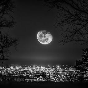 Luna Illumination by Christian Skilbeck - City,  Street & Park  Vistas ( moon, black and white, city lights, night, cityscape )