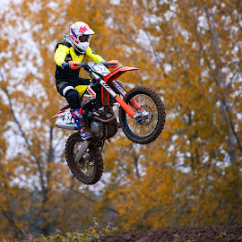 Motocross by Tim Harris - Sports & Fitness Motorsports ( motorcycles, motorbike, motocross, racing, moto, motorcycle, dirt bike, motorsport,  )