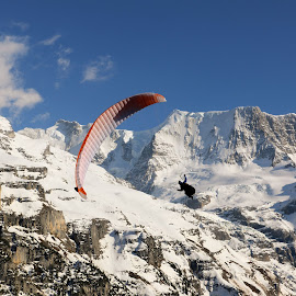 by TC Warren - Novices Only Sports ( paragliding, murren, switzerland )