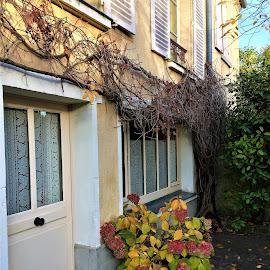 maison de peintres by Nathalie Coget - Buildings & Architecture Homes
