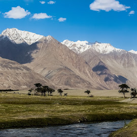 It Feels Good to be Lost in the Right Direction !! by Jay Thakore - Landscapes Mountains & Hills ( #lehladakh #landscape #photography #landscapelove #canon #canon700d #kashmir #heavenonearth #india #asia #nubravalley )