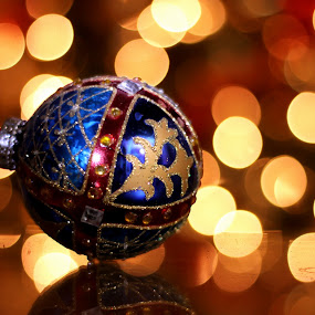 The Christmas spirit is in the air! by Avishek Bhattacharya - Public Holidays Christmas ( christmas decorations, christmas lights, christmas, bokeh,  )