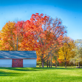 New England Fall- Mendon Mass by Alan Roseman - Buildings & Architecture Other Exteriors ( barn in fall, alan roseman american photographer, barn, new england, fall colors, mendon ma, new england fall, fall, peacefull )