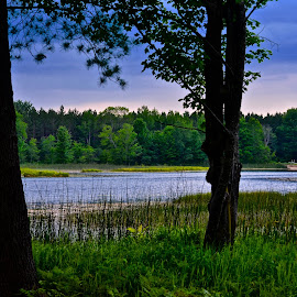 Serenity by Gloria Davis - Landscapes Weather ( nature, serenity, late afternoon, blue skies, lake,  )