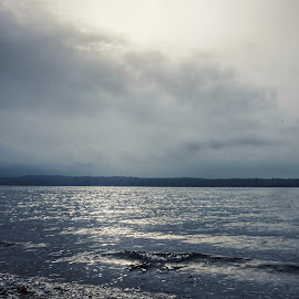 Puget Sound  by Todd Reynolds - Landscapes Weather