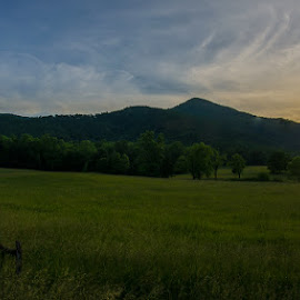 by Tony Cox - Landscapes Sunsets & Sunrises ( cades cove )