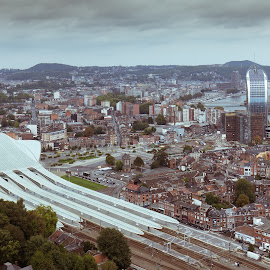 Top view of Liege by Nicolas Van Weegen - City,  Street & Park  Neighborhoods ( vintage, station, guillemins, house, city, style, railway, buildings, train, viewpoint, streets, liege, view, galatrava, panoramic, downtown, top,  )