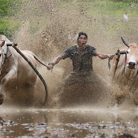 by Bernard Tjandra - Sports & Fitness Rodeo/Bull Riding