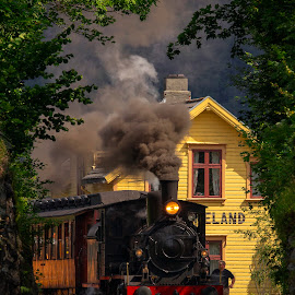 Haukeland Station by Rune Askeland - Transportation Trains ( steam locomotive, bergen, old, haukeland, railway, station, gamle vossebanen, train, norge )