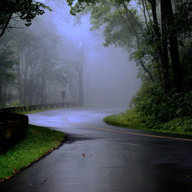 Morning Fog Blue Ridge Parkway by Matt Bradshaw - City,  Street & Park  Street Scenes