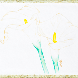 Arum lilies by Jo Soule - Painting All Painting ( arum lilies, lilies, flowers )