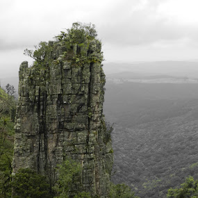by Kirsty Wilkins - Novices Only Landscapes ( blyde river canyon )