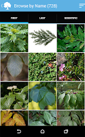 Screenshot of Audubon Trees
