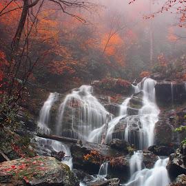 Captivating Carolinas by Avishek Bhattacharya - Landscapes Waterscapes ( land of waterfalls, foliage, north carolina, rocks, nc,  )