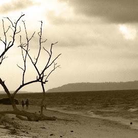 Beaches by Kunal Kumar Maurya - Landscapes Beaches ( beach, seascape )