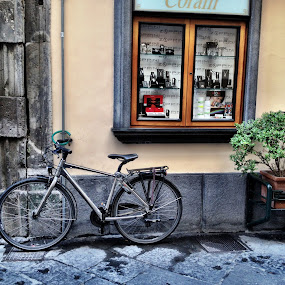 by Donna Silva - City,  Street & Park  Neighborhoods ( waiting for a rider )