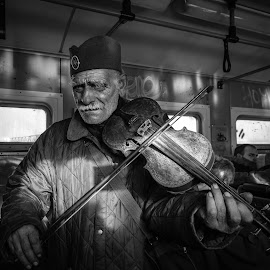 by Darijan Mihajlovic - People Musicians & Entertainers ( street portrait, b&w, violin, balkan, belgrade )