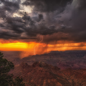 Grand Canyon Lightning by Bryan Snider - Landscapes Weather ( thunder, lightning, arizona lightning, monsoon, thunderstorm, sunset, arizona, weather, national parks, storm chasing, nikon, grand canyon lightning, rain, grand canyon,  )