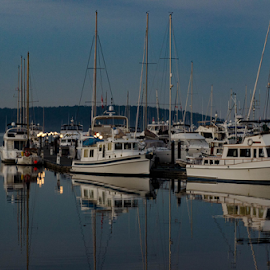 Evening in the Marina by Darren Sutherland - Transportation Boats ( local stuff )