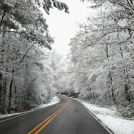 First Snow by Shawn Thomas - Transportation Roads