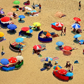 On the beach by Francis Xavier Camilleri - People Street & Candids