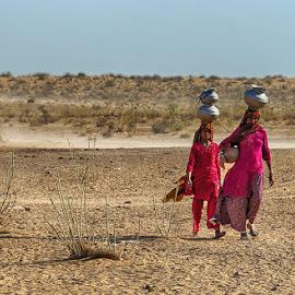 Cholistan by Abdul Rehman - People Street & Candids ( sand, pakistan, cholistan, thrilling, dangerous, light, natural )