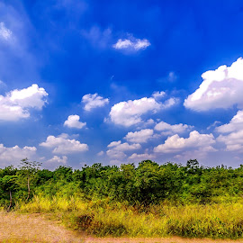 Serene by AJ Canon - Landscapes Travel ( clouds, sky, nature, blue, green, landscapes )