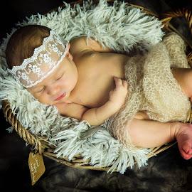 Sophia by Sharon Fuscellaro Canale - Babies & Children Babies ( peaceful, girl, female, basket, little, sleeping, baby, newborn )
