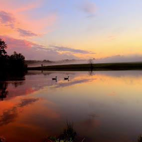 Color Palette  by Kevin Hill - Landscapes Waterscapes ( foggy, waterscape, sunset, cloudscape, lake, geese,  )