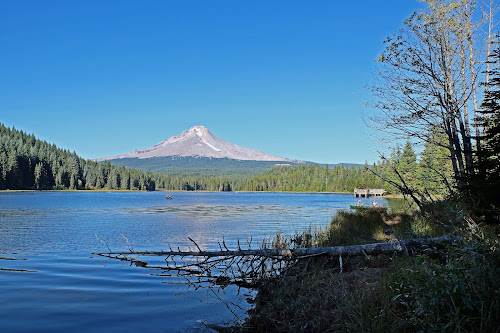 Mt. Hood from Trillium Lake by Steve Solomon - Landscapes Mountains & Hills ( oregon, mountain, trillium lake, trees, mt. hood )