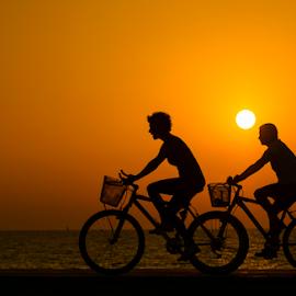 Wheel within a wheel by Yuval Shlomo - Sports & Fitness Cycling