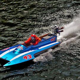 Hydroplane No. 43  by Megary T - Transportation Boats ( rogue river, hydroplane, boats, boatnic2015, apba racing )