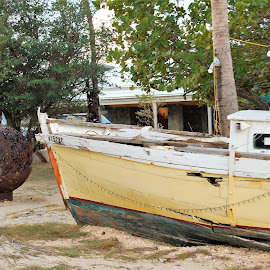 by Donna Van Horn - Transportation Boats (  )