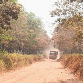 Dusty Road by Sugiarto Widodo - Transportation Automobiles ( road, truck, trucks, forrest, dust, dusty )