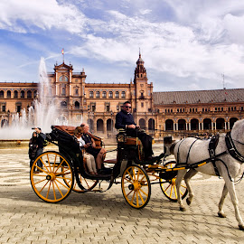 The carriage ride by Panait Sorin - City,  Street & Park  Street Scenes ( carriage, street )