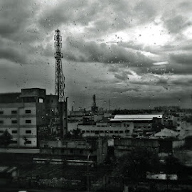 Rainy View by Ramachandran Sridhar - Instagram & Mobile Other