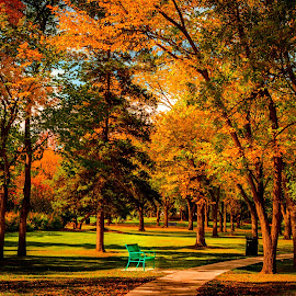 by Joseph Law - City,  Street & Park  City Parks