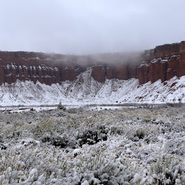 Snow of Red Cliffs by Chris Beck Johnson - Landscapes Weather