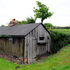 A Shed at Lydney by DJ Cockburn - Buildings & Architecture Other Exteriors ( lydney canal, gloucestershire, shed, lydney, tree, forest of dean, lydney harbour, building, outbuilding, field, wooden, grass, wood, timber )