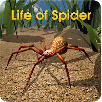 Life of Spider For PC (Windows And Mac)