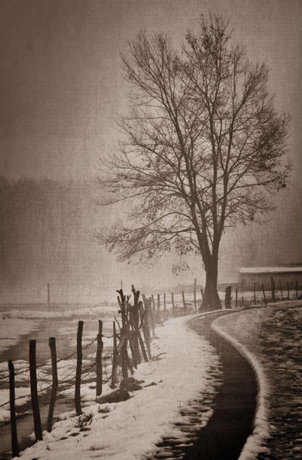 by Boricic Goran - City,  Street & Park  City Parks