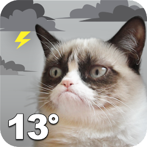 Grumpy Cat Weather For PC